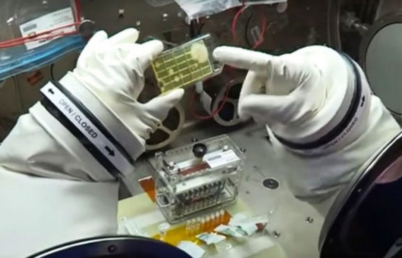 NASA Microbes In Space