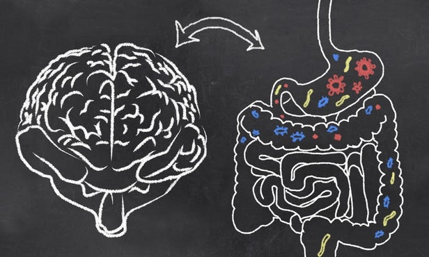 Depression and PTSD may be linked to bacteria in the gut