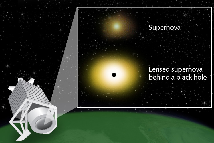 A supernova explosion of a massive star appears brighter to an observer on Earth if a black hole sits between the explosion and the observer. The black hole's gravity distorts the path of light emitted by the supernova, acting as a lens that magnifies the light.