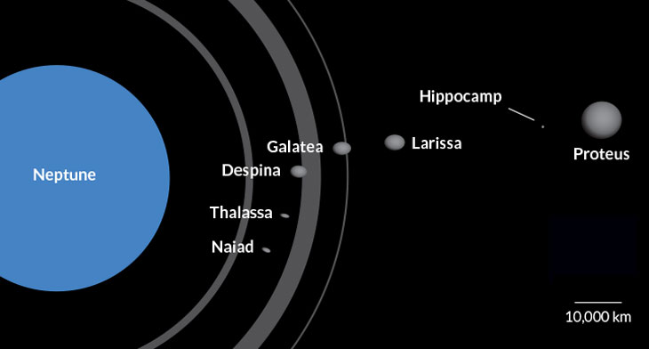 Neptune has seven inner moons (illustrated here with the planet's rings), and the smallest now has a name: Hippocamp.