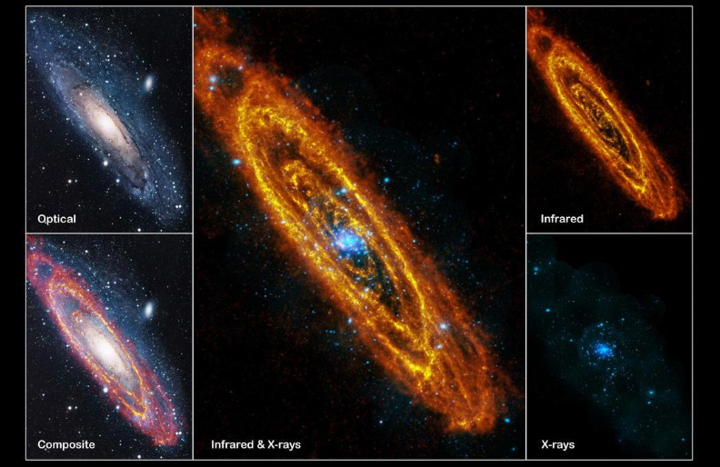 Andromeda: our nearest large galactic neighbour.